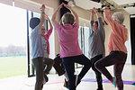 Active senior women exercising, practicing yoga tree pose