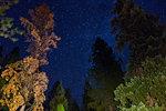 Night sky with stars, Arizona, USA