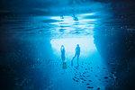 Couple snorkeling underwater among fish, Vava'u, Tonga, Pacific Ocean