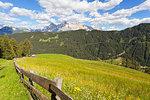 Longiarù, San Martino in Badia, Badia Valley, Dolomites, Bolzano province, South Tyrol, Italy. Meadows of Longiarù with Sasso della Croce in the background.