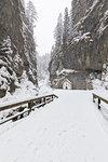 The small Church inside the Sottoguda Serrai Gorge at the foot of Marmolada (Sottoguda, Rocca Pietore, Belluno province, Veneto, Italy, Europe)