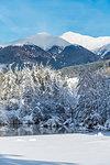 Dobbiaco/Toblach, province of Bolzano, South Tyrol, Italy. Winter at the Lake Dobbiaco