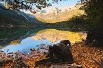 Lake Tovel at sunrise Europe, Italy, Trentino Alto Adige, Trento district.