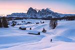 Alpe di Siusi/Seiser Alm, Dolomites, South Tyrol, Italy. Sunrise on the Alpe di Siusi / Seiser Alm with the peaks of Sassolungo / Langkofel and Sassopiatto / Plattkofel.