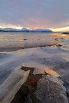 Sunset on frozen sea, Troms, Norway