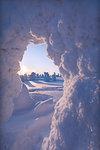 Frozen woods, Riisitunturi National Park, Posio, Lapland, Finland