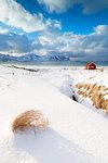 Snow surrounding the sandy beach, Ramberg, Flakstad municipality, Lofoten Islands, Norway