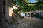 Punta San Vigilio gardens, Garda, Garda Lake, Verona district, Veneto, Italy