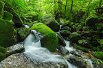 Kagoshima Prefecture, Japan