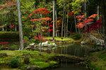 Autumn colours in the moss garden of Saiho-ji temple, UNESCO World Heritage Site, Kyoto, Japan, Asia