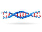 Part of DNA molecule on white background, illustration.