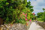 Townscape in Taketomi Island, Okinawa Prefecture, Japan