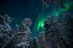 Aurora Borealis (Northern Lights), Pallas-Yllastunturi National Park, Lapland, Finland, Europe