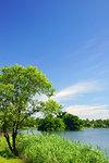 Lake Ezu, Kumamoto Prefecture, Japan