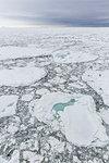 First year sea ice at Cape Fanshawe, Spitsbergen, Svalbard, Arctic, Norway, Europe
