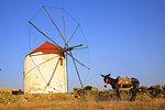 The village of Kampos, Tinos Island, Cyclades, Greek Islands, Greece, Europe