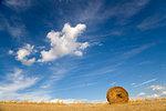 Tuscan landscape, hay bale