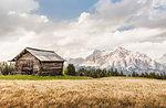 Cabin and wheatfield, Alta Badia South Tyrol, Italy