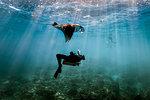 A Manta Ray (Manta alfredi) swimming over male scuba diver , Bali, Indonesia