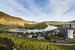 Cruise ship on the Moselle River near Bremm, Moselle, Rhineland-Palatinate, Germany, Europe