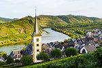 Vineyards above Bremm on the Moselle River, Rhineland-Palatinate, Germany, Europe