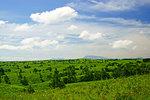Hill of Oshitoishi, Kumamoto Prefecture, Japan