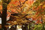 Fukiji Temple, Oita Prefecture, Japan