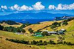 Farm at Onetangi, Waiheke Island, North Island, New Zealand.