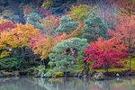 Tenryuji Temple, Sogen Garden, UNESCO World Heritage Site, Arashiyama, Kyoto, Japan, Asia