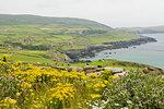 The Beara Peninsula, County Cork, Munster, Republic of Ireland, Europe