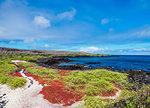 Landscape of the coast near Puerto Velazco Ibarra, Floreana (Charles) Island, Galapagos, UNESCO World Heritage Site, Ecuador, South America