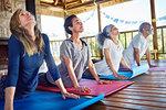 Serene group practicing upward facing dog pose in hut during yoga retreat