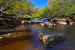 Autumn at lower Wainwath Falls, Swaledale, Yorkshire Dales, North Yorkshire, England, United Kingdom, Europe