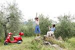 Friends taking photo in olive grove, Città della Pieve, Umbria, Italy