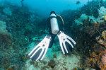 Follow me scuba diving on seabed, Komodo Island, Nusa Tenggara Timur, Indonesia