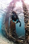 Underwater view of female scuba diver exploring Sapona wreck, Alice Town, Bimini, Bahamas