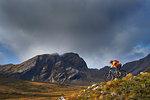 Male mountain biker biking down mountain landscape,  Achnasheen, Scottish Highlands, Scotland
