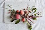 Beetroot and radish