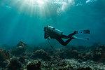 Underwater view of diver exploring the rich waters in Raja Ampat, Sorong, Nusa Tenggara Barat, Indonesia