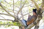 Man using smartphone on tree, Pagudpud, Ilocos Norte, Philippines