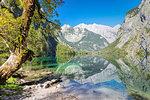 Watzmann Mountain reflecting in Lake Obersee, near lake Koenigssee, Berchtesgadener Land, Berchtesgaden National Park, Upper Bavaria, Bavaria, Germany, Europe
