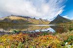 Autumn leaves by sea below mountains in Fredvang, Lofoten Islands, Norway, Europe