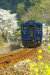 Kawasemi Yamasemi, two-car limited express train, Kumamoto Prefecture, Japan
