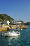 Misumi West Port in Spring, Kumamoto Prefecture, Japan