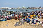Vizhinjam beach fish market, near Kovalam, Kerala, India, South Asia