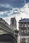 Scenic view of Ile de la Cite and Notre Dame Cathedral, Paris, France