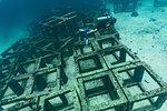 Diver exploring concrete cubes on seabed, Ko Racha Yai, Rawai, Phuket, Thailand