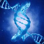 DNA molecule, illustration. Dna double helix molecule.