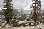 Man sitting on log by trees