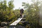Mother and son hiking on wooden bridge in Fulufjallet National Park, Sweden
